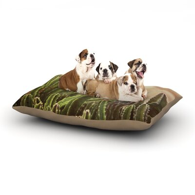 Jillian Audrey Green Grass Cactus Dog Pillow with Fleece Cozy Top Size: Small (40 W x 30 D x 8 H)