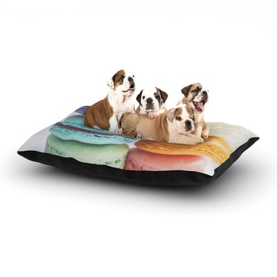 Libertad Leal I Want Macaroons Dog Pillow with Fleece Cozy Top Size: Large (50 W x 40 D x 8 H)