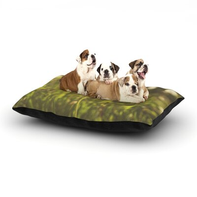 Libertad Leal As You Wish Dandelions Dog Pillow with Fleece Cozy Top Size: Small (40 W x 30 D x 8 H)