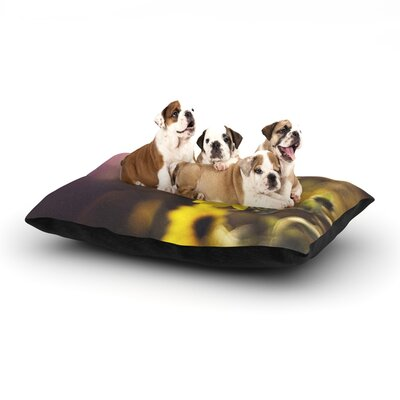 Libertad Leal Magic Light Flower Dog Pillow with Fleece Cozy Top Size: Large (50 W x 40 D x 8 H)