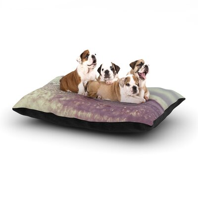 Libertad Leal You are a Star Dog Pillow with Fleece Cozy Top Size: Large (50 W x 40 D x 8 H)