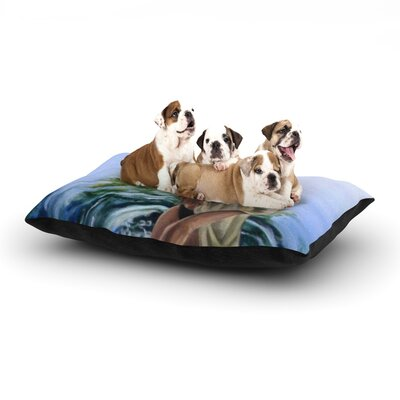 Lydia Martin Knee Deep Dog Pillow with Fleece Cozy Top Size: Small (40 W x 30 D x 8 H)