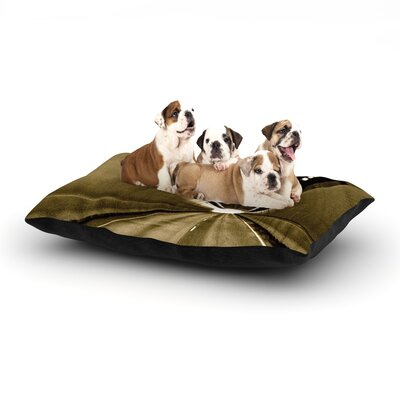 Maynard Logan Tunnel Dog Pillow with Fleece Cozy Top Size: Small (40 W x 30 D x 8 H)