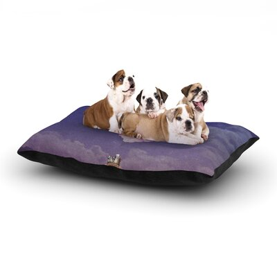 Monika Strigel Never Stop Exploring IV Dog Pillow with Fleece Cozy Top Size: Large (50 W x 40 D x 8 H)