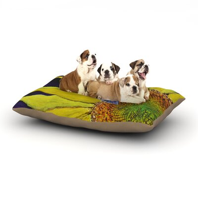 David Joyner Butterfly Dog Pillow with Fleece Cozy Top Size: Large (50 W x 40 D x 8 H)