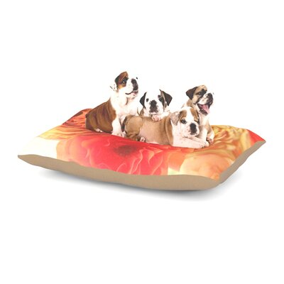 Debbra Obertanec Coral Ranunculus Floral Dog Pillow with Fleece Cozy Top Size: Small (40 W x 30 D x 8 H)