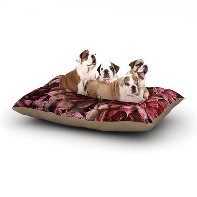 Debbra Obertanec Red Succulents Dog Pillow with Fleece Cozy Top Size: Large (50 W x 40 D x 8 H)