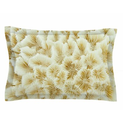 Susan Sanders Ivory White Ocean Beach Coral Photography Sham Size: Queen