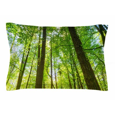 Susan Sanders Green Tree Sky Photography Sham Size: Queen
