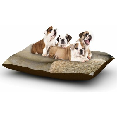 Susan Sanders River Stones Dog Pillow with Fleece Cozy Top