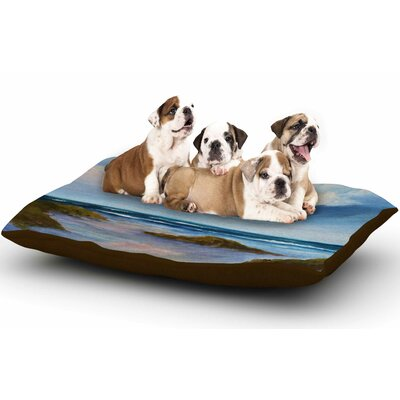 Rosie Brown Summer Showers Beach Dog Pillow with Fleece Cozy Top