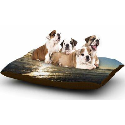 Nick Nareshni Sun Over Scripps Pier Dog Pillow with Fleece Cozy Top