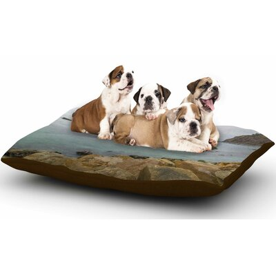 Nick Nareshni Rock Above Water Dog Pillow with Fleece Cozy Top