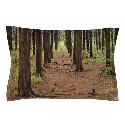 Sylvia Coomes Parallel Forest Photography Sham Size: Queen
