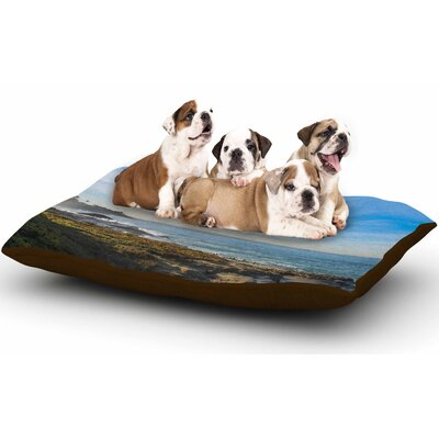 Nick Nareshni Blue Sky Over the Ocean Coastal Dog Pillow with Fleece Cozy Top