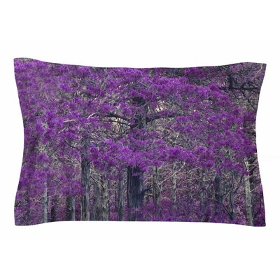 Sylvia Coomes Purple Tree Photography Sham Size: 20 H x 40 W x 0.25 D