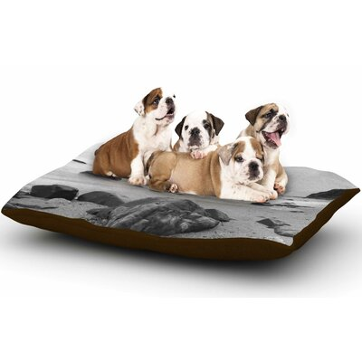 Nick Nareshni Water Moving Around Rocks Dog Pillow with Fleece Cozy Top