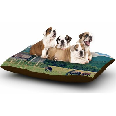 Robin Dickinson Country Life Dog Pillow with Fleece Cozy Top