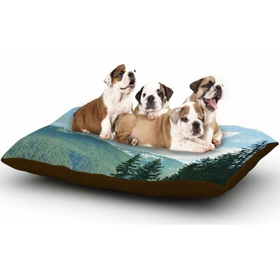 Robin Dickinson Adventure Beckons Nature Landscape Dog Pillow with Fleece Cozy Top
