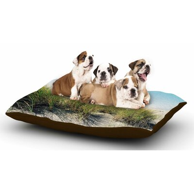 Sylvia Cook Dune Grass Coastal Photography Dog Pillow with Fleece Cozy Top