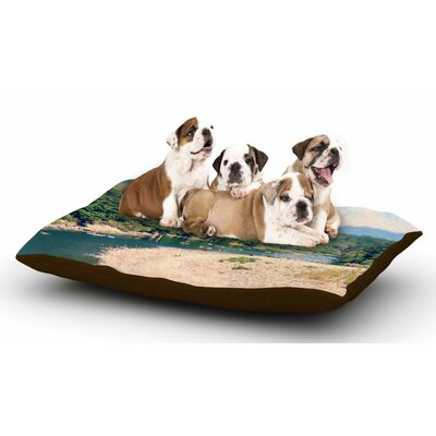 Robin Dickinson Summertime Float River Dog Pillow with Fleece Cozy Top