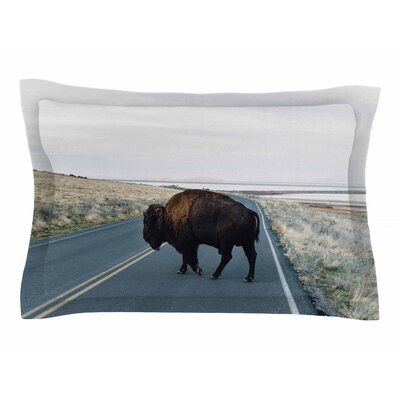 Chelsea Victoria Buffalo Crossing Photography Animals Sham Size: 20 H x 40 W x 0.25 D