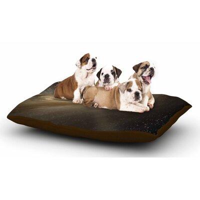 Suzanne Carter Galaxy Dog Pillow with Fleece Cozy Top