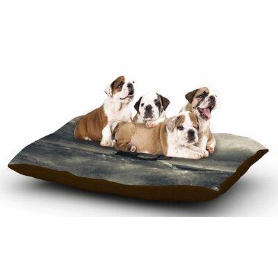Viviana Gonzalez Chapter III Dark Ship Dog Pillow with Fleece Cozy Top