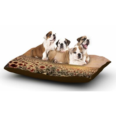 Viviana Gonzalez Lone Tree & Sunflowers Field Sunny Nature Dog Pillow with Fleece Cozy Top