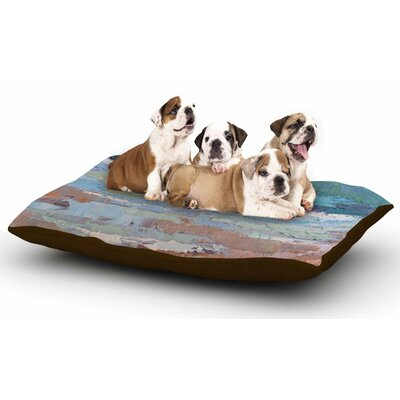 Carol Schiff On the Beach Dog Pillow with Fleece Cozy Top