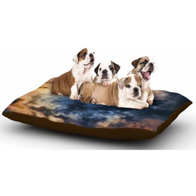 Bruce Stanfield Night Moves Dog Pillow with Fleece Cozy Top