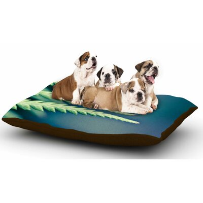 Ann Barnes Castaway Coastal Dog Pillow with Fleece Cozy Top Size: Small (40 W x 30 D x 8 H)