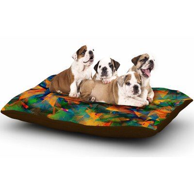 Danny Ivan No Way Out Abstract Dog Pillow with Fleece Cozy Top