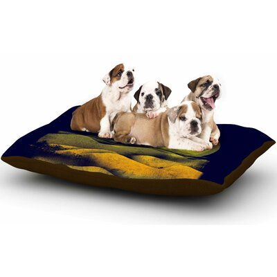 Federic Levy-Hadida Sunset Landscape Dog Pillow with Fleece Cozy Top