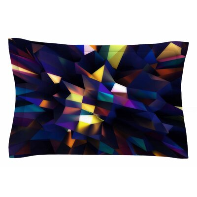 Danny Ivan Low Iris Poly Illustration Sham Size: Queen