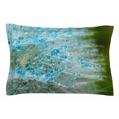 Ginkelmier Blue Rain Dandelion Photography Sham Size: King