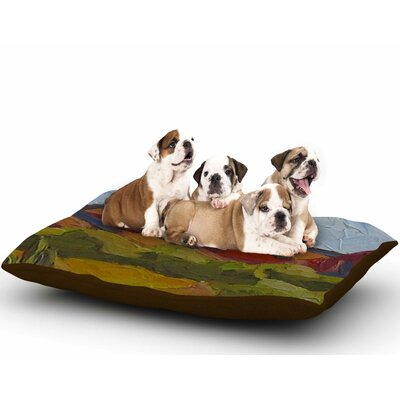 Jeff Ferst Arizona Desert Mountain Dog Pillow with Fleece Cozy Top