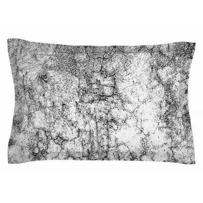 Ann Barnes Marble I Sham Size: 20 H x 30 W x 1 D