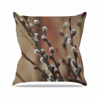 Angie Turner Pussy Willows Outdoor Throw Pillow Size: 18 H x 18 W x 5 D