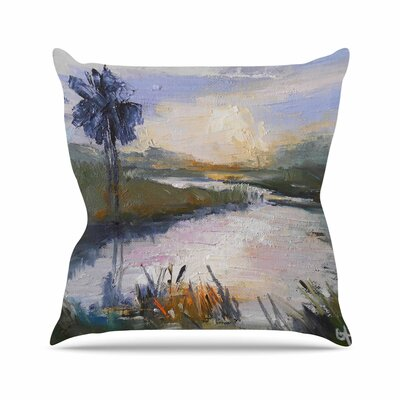 Carol Schiff Florida Marshland Outdoor Throw Pillow Size: 18 H x 18 W x 5 D