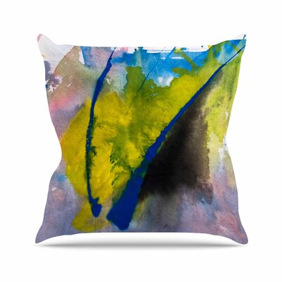 Malia Shields Exploration Outdoor Throw Pillow Size: 18 H x 18 W x 5 D