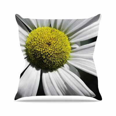 Nick Nareshni Open Daisy Outdoor Throw Pillow Size: 18 H x 18 W x 5 D
