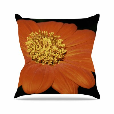 Nick Nareshni Open Wide Flower Outdoor Throw Pillow Size: 16 H x 16 W x 5 D