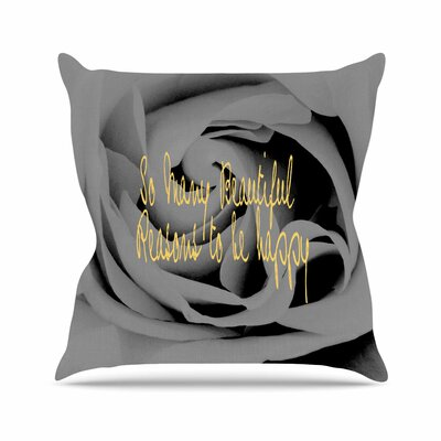 Suzanne Carter Happy Floral Outdoor Throw Pillow Size: 16 H x 16 W x 5 D