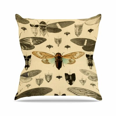 Suzanne Carter Vintage Cicada Bugs Pattern Outdoor Throw Pillow Size: 16 H x 16 W x 5 D