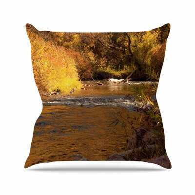 Sylvia Coomes Autumn Stream Outdoor Throw Pillow Size: 16 H x 16 W x 5 D