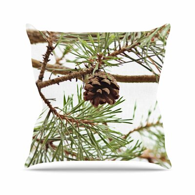 Sylvia Coomes Pinecone Outdoor Throw Pillow Size: 18 H x 18 W x 5 D