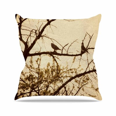 Sylvia Coomes Golden Photography Outdoor Throw Pillow Size: 18 H x 18 W x 5 D