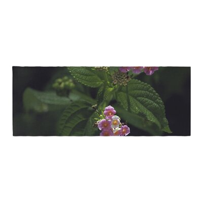 Nick Nareshni The Lantana Flower Bed Runner