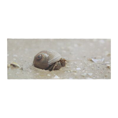 Angie Turner Hermit Crab Photography Bed Runner